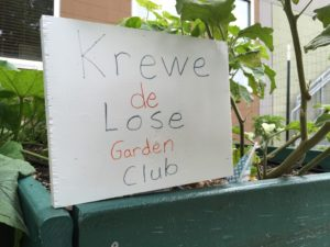 krewe de lose garden club sprout